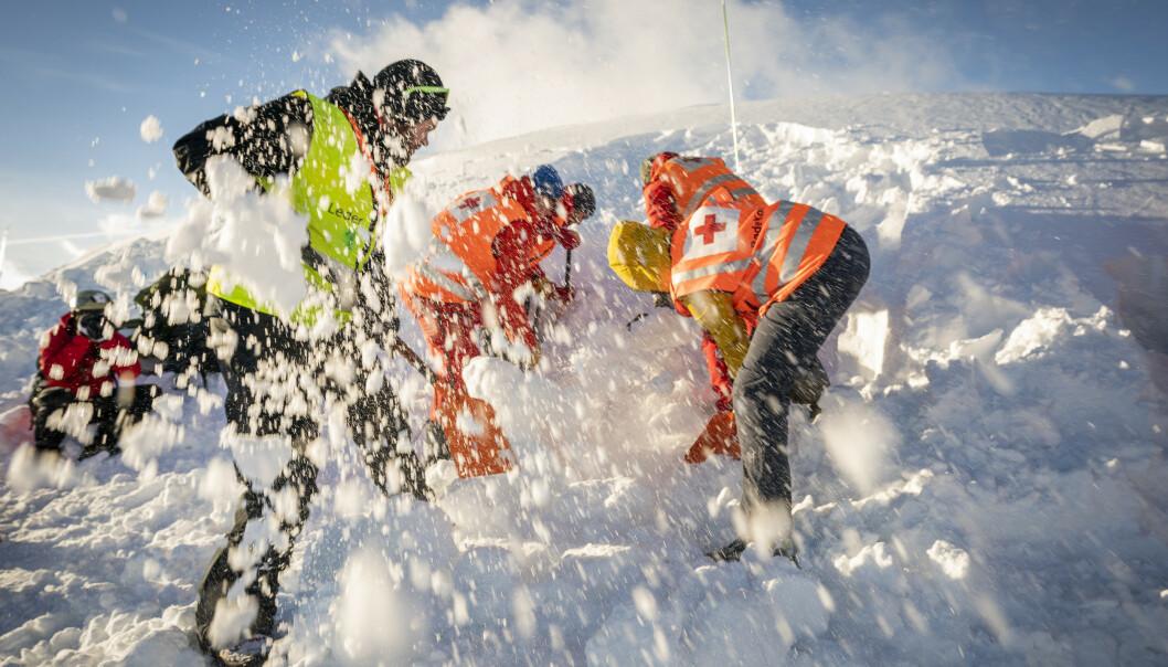 SKREDFARE: Redningsarbeidere fra Røde Kors graver etter en person i et snøskred på Finse under en øvelse under Finsekurset. Foto: Heiko Junge / NTB scanpix.