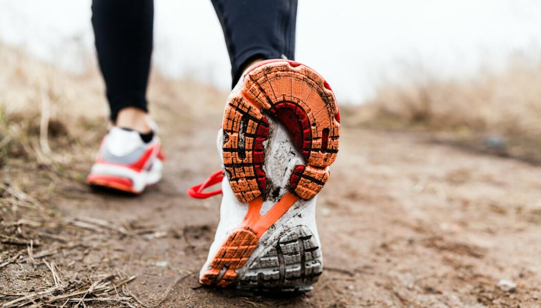 TERRENG: Har du løpt lite så er grus, gress og skogsterreng gode valg for å holde seg skadefri. Ulent terreng vil også gi deg god bentrening FOTO: NTB Scanpix