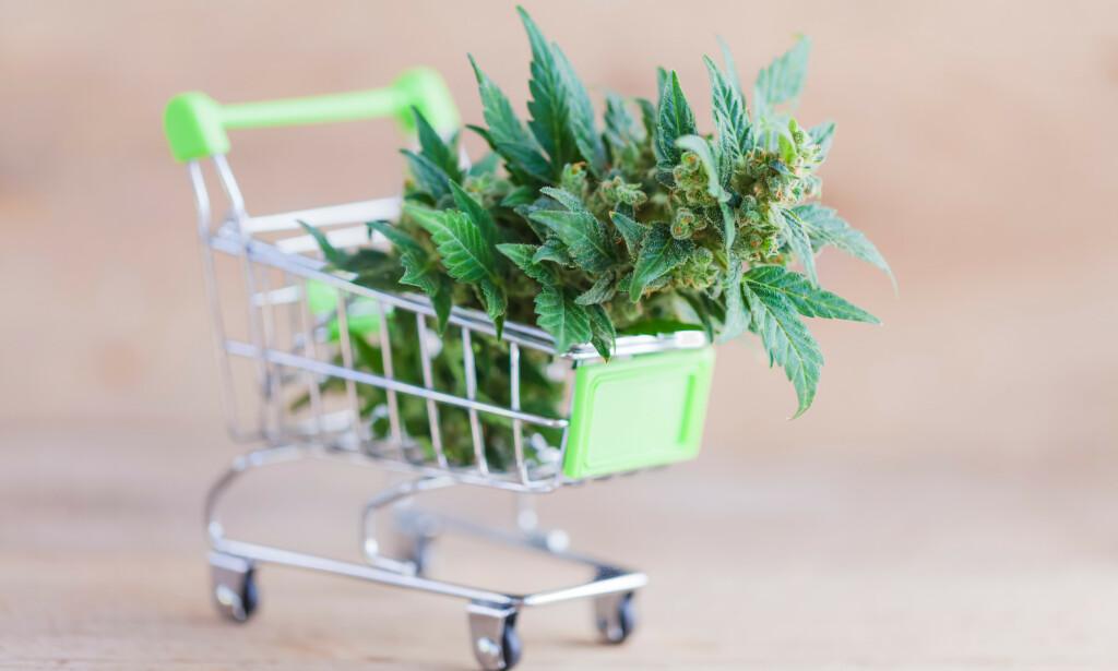 Selges: Regulert salg av cannabis er milliardindustri. Foto: Shutterstock / NTB scanpix