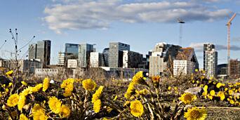 image: Endelig kommer våren
