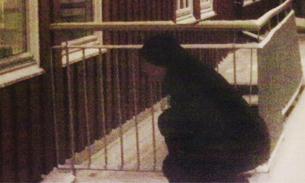 FRIKJENT: Mannen i 40-åra ble frikjent i Høyesterett for stalking. Årsak: Kvinnene var ikke klar over stalkingen da det skjedde. Nå vil politikerne endre loven. Foto: Politiet