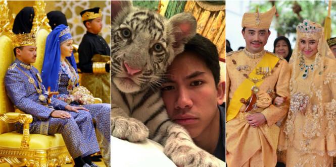 Familiens luksusliv med diamanter og eksotiske dyr i shariaregimet