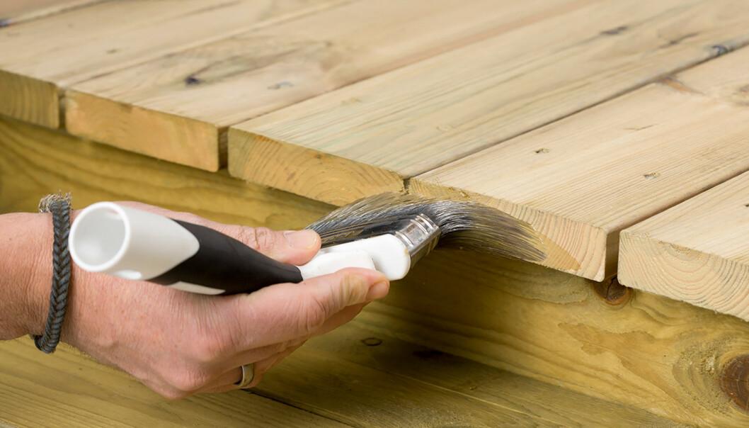 Snittflater: Impregnerte bord har dårlig beskyttelse i snittflaten. Her er det viktig å pøse på med beskyttelse. Foto: Nordsjø