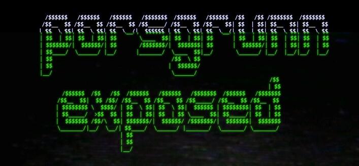Hackeren har satt opp sida porsgrunn.exposed, hvor epostene visstnok skal lekkes. Med mindre du stopper han, da.