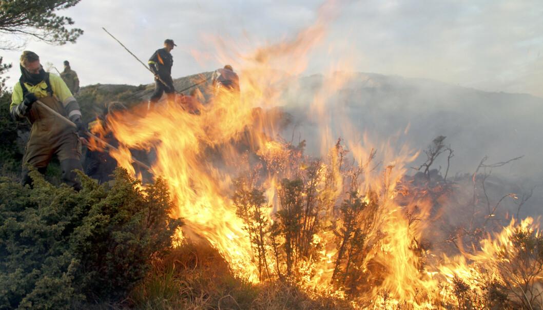 UTE AV KONTROLL: Bildet viser en lyngbrann i Hordaland i mai i 2012 som førte til at politi og brannvesen evakuerte beboerne nærmest området. Foto: Tor André Johannessen / NTB scanpix