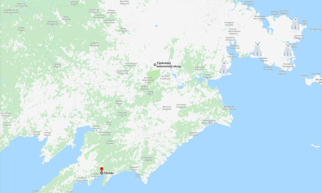 LANG VEI: Det anslår at isbjørnen har reist om lag 700 kilometer fra sitt naturlige habitat på et isflak. Foto: Google maps / Dagbladet