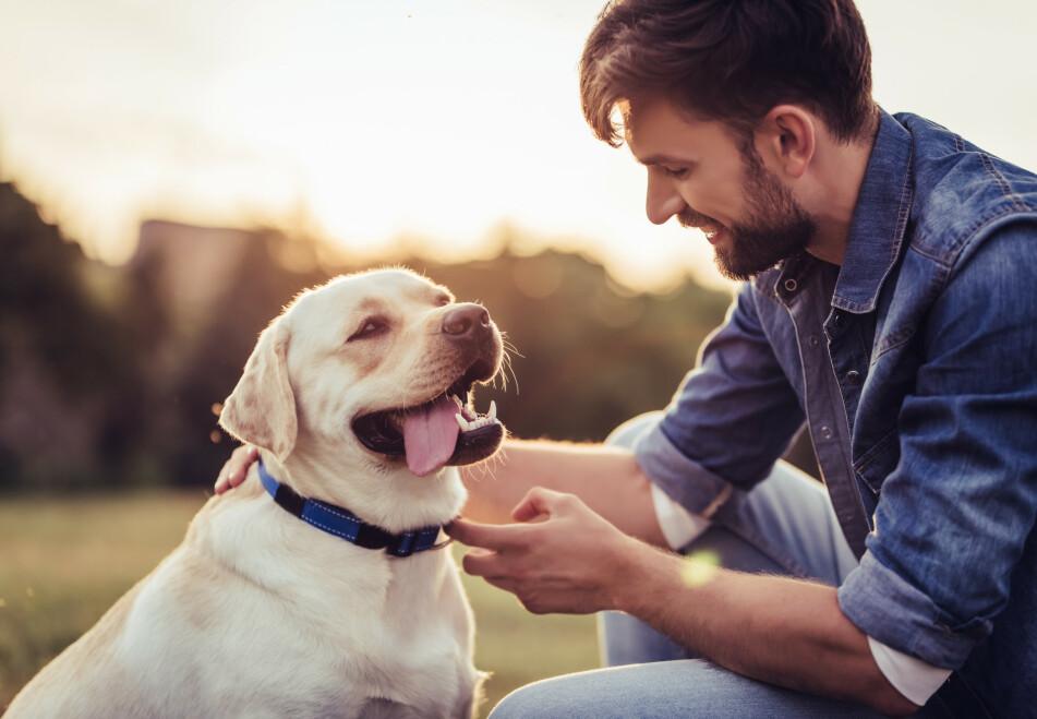 <strong>BAKTERIER i SKJEGG:</strong> Samtlige av mennenes skjegg som nylig ble testet hadde mer bakterier i seg enn hunden hadde i pelsen. FOTO: NTB Scanpix