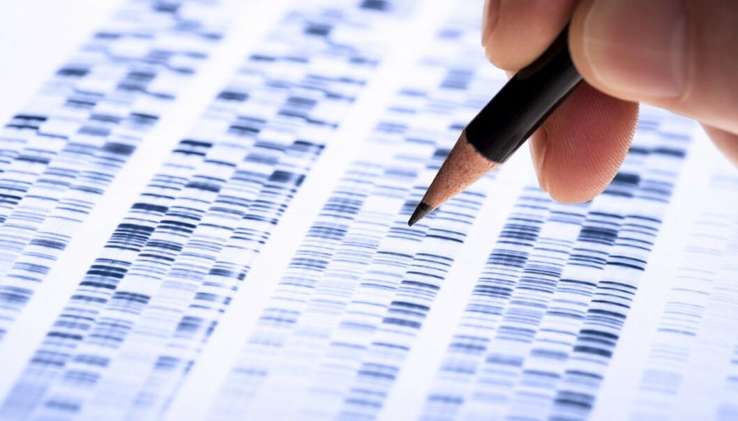 <strong>KOMPLISERTE DATA:</strong> Kombinasjoner av gener danner det biologiske grunnlaget for hvem du er. Datamaskiner vil i framtiden gjøre jobben med å lese dem mye enklere, sier Dag Undlien, professor i medisinsk genetikk. FOTO: Shutterstock.