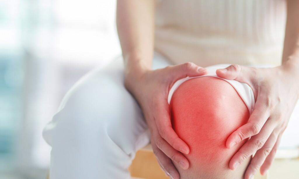Reaktiv leddbetennelse rammer vanligvis ett eller få ledd, hyppigst i knær, ankler eller føtter. Foto: NTB Scanpix / Shutterstock / 4126513