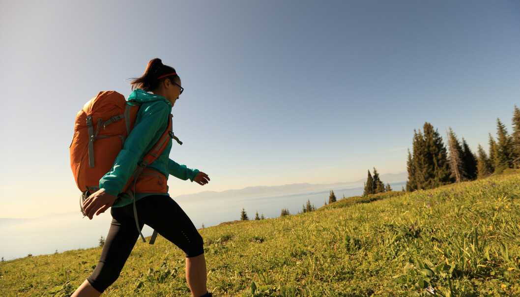 LEGG BORT MOBILEN: Gåturer i naturen kan redusere stress, men kun dersom du er bevisst og til stede. FOTO: NTB Scanpix