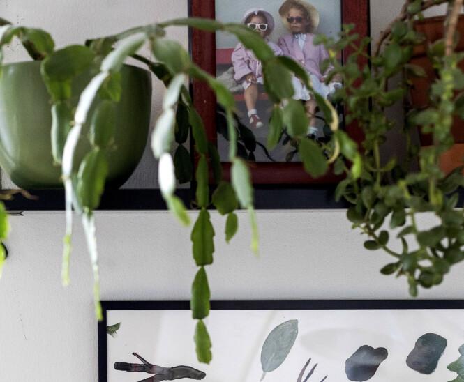 <strong>PÅ HYLLA:</strong> Småbilder kan godt stå på en hylle, nattbord eller bokhylle blandet med ulike gjenstander, tipser Tonje Buer ved Fineart. Foto: Tore Meek / NTB scanpix.