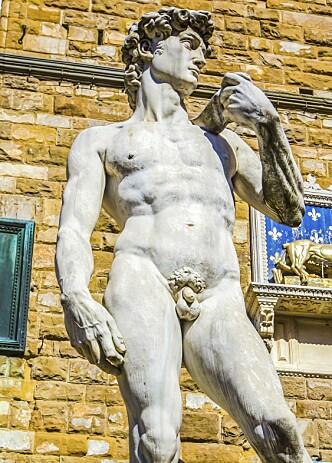 BIBELSK HELT: Statuen av David er laget av Michelangelo. Foto: NTB Scanpix