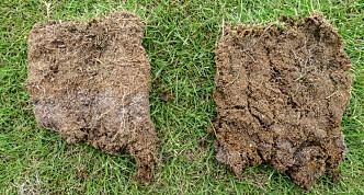 Jordsjekk: Er prøven fuktig, som den til høyre, går du rett på å anlegge ny plen. Er den tørr som den til venstre kan du prøve såpetrikset. Foto: Agnar Kvalbein