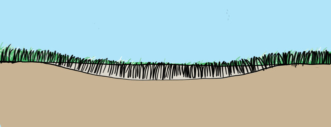 2. La gresset vokse seg igjennom jorda og gjenta behandlingen.