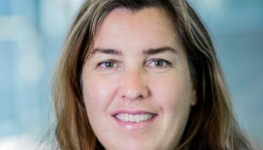 RISIKOFYLT: Professor Nina Marianne Iversen berømmer Coca Coca for å være tøffe. Foto: BI