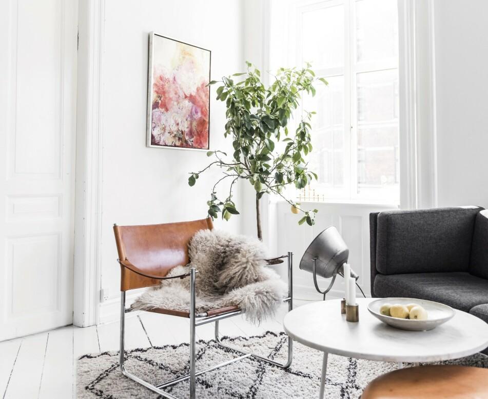 VELKOMMEN: Bli med hjem til Tilde og Mortens fantastiske leilighet! Foto: Benjamin Lee Rønning Lassen