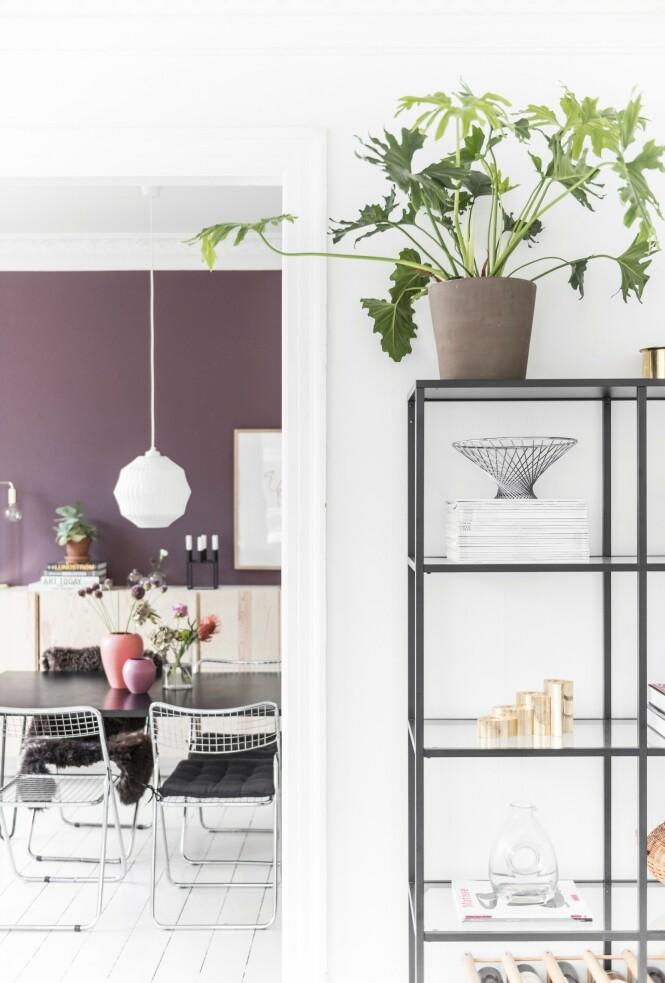 Mal en av veggene i en kontrastfarge for å få de hvite detaljene til å synes bedre. Foto: Benjamin Lee Rønning Lassen