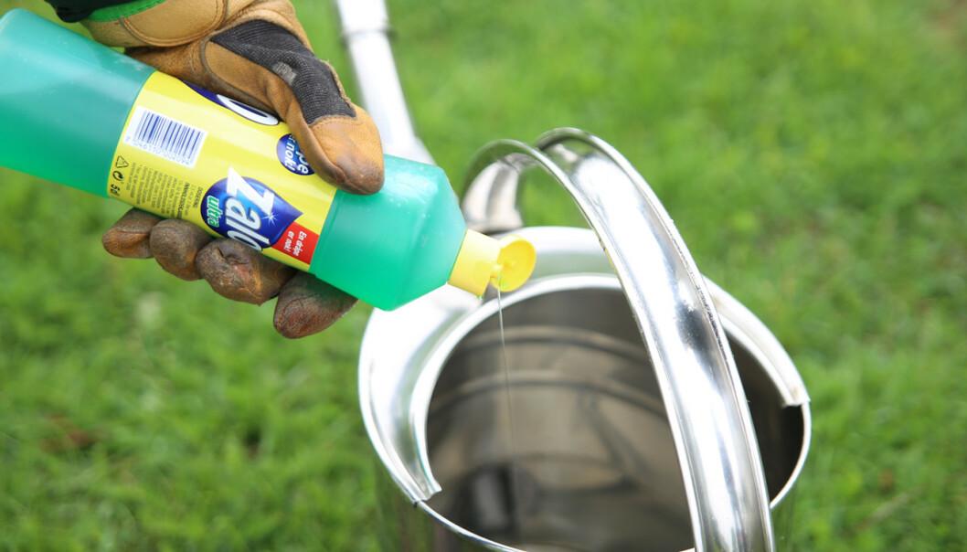 Såpe: Litt oppvasksåpe og vann kan fikse den tørre flekken. Foto: Øivind Lie-Jacobsen
