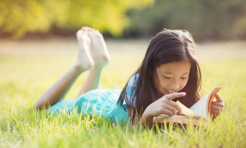 image: De beste bøkene til sommerferien