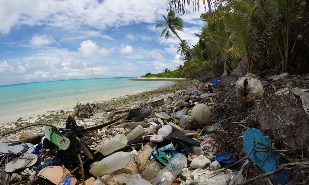 FORSØPLET: På Kokosøyene fant forskerne hele 238 tonn plast. Foto: Silke Struckenbrock/AFP