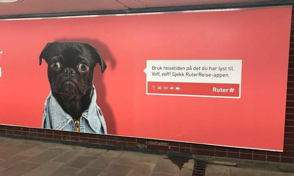MOPS: På Jernbanetorget T-banestasjon kan man finne denne reklameplakaten for Ruter. Bildet er tatt i mai i år. Foto: Tommy Myran