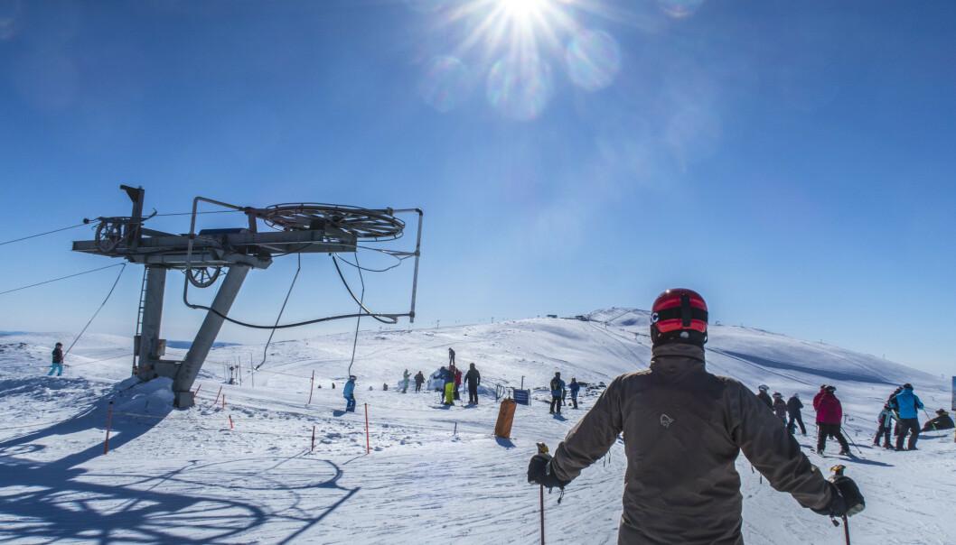 Trysil er kjent for sine skiområder og tjener godt på skiturisme. Nå ønsker Venstres førstekandidat i høstens kommunevalg at kommunen også skal satse på produksjon av medisinsk cannabis. Foto: Halvard Alvik, NTB scanpix