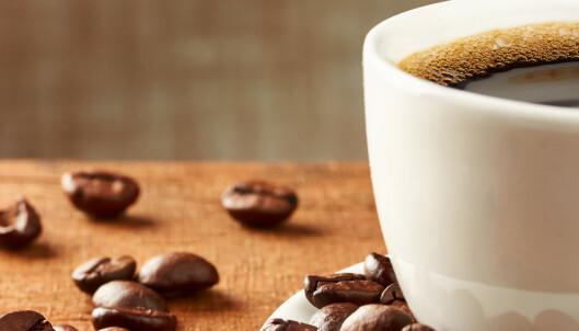 25 kopper kaffe om dagen er greit for hjertet
