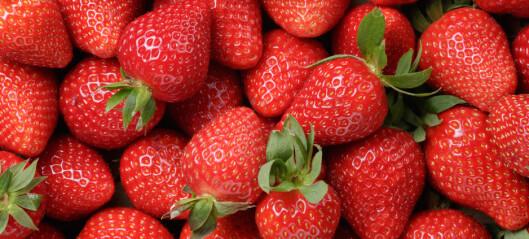 Ti gode grunner til å spise jordbær i sommer