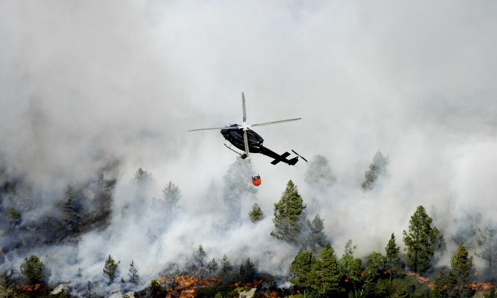 KAN SKJE HYPPIGERE: Skogbrann, lik denne som oppstod ved Arendal, kan skje hyppigere som følge av klimaendringene. Foto: Thomas Rasmus Skaug / Dagbladet