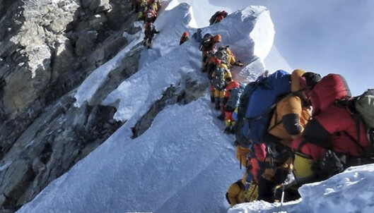 Sherpaer hentet ned fire døde personer fra verdens høyeste fjell