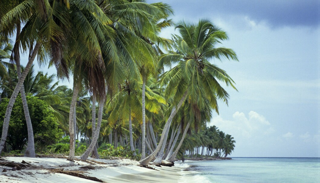 <strong>POPULÆR DESTINASJON:</strong> Millioner av turister besøker Den dominikanske republikk hvert år. Foto: imageBROKER/REX