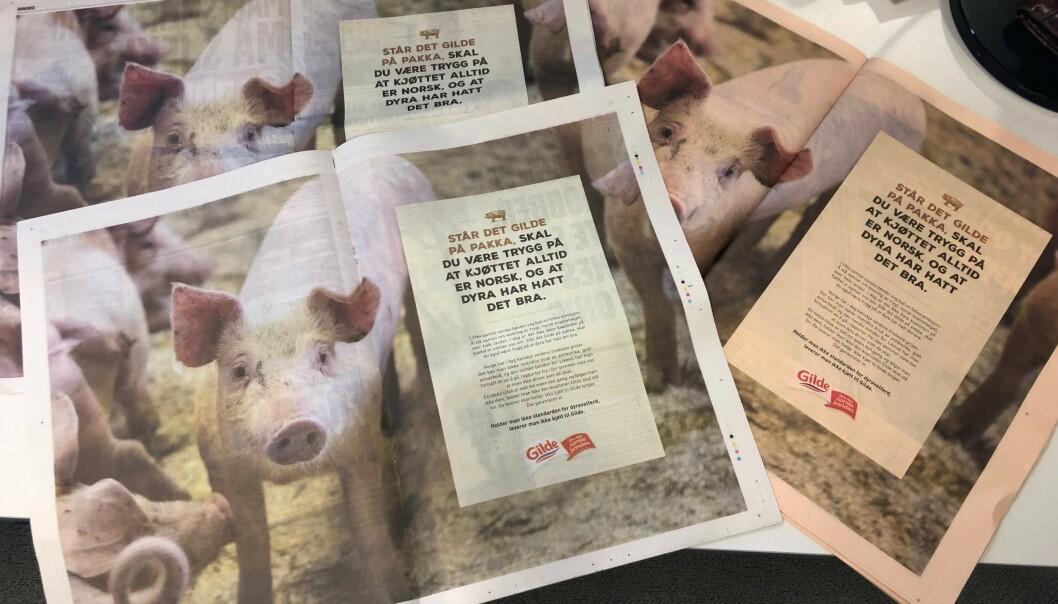 <strong>KOSTET FLESK?:</strong> Her et utvalg av dagens aviser med annonsen. - Vi kommenterer aldri våre annonsebudsjetter, sier Eskil Pedersen i Nortura. Foto: Trym Mogen / Dagbladet