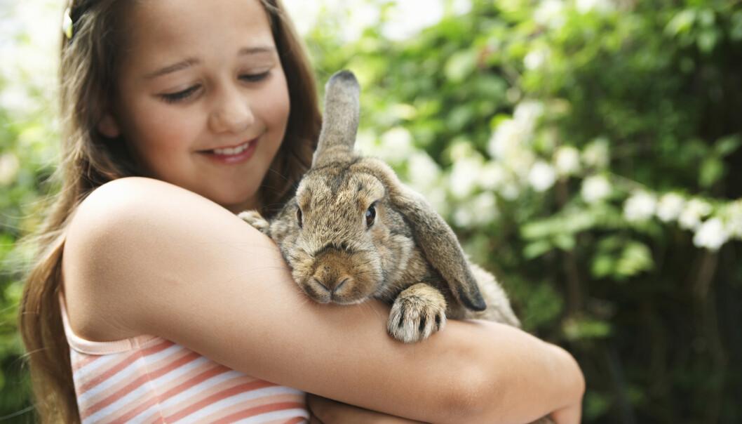 KOSELIG, MEN IKKE BARNAS ANSVAR: - Husk at de voksne har ansvaret for dyra, minner Dyrebeskyttelsen oss om. FOTO: NTB Scanpix