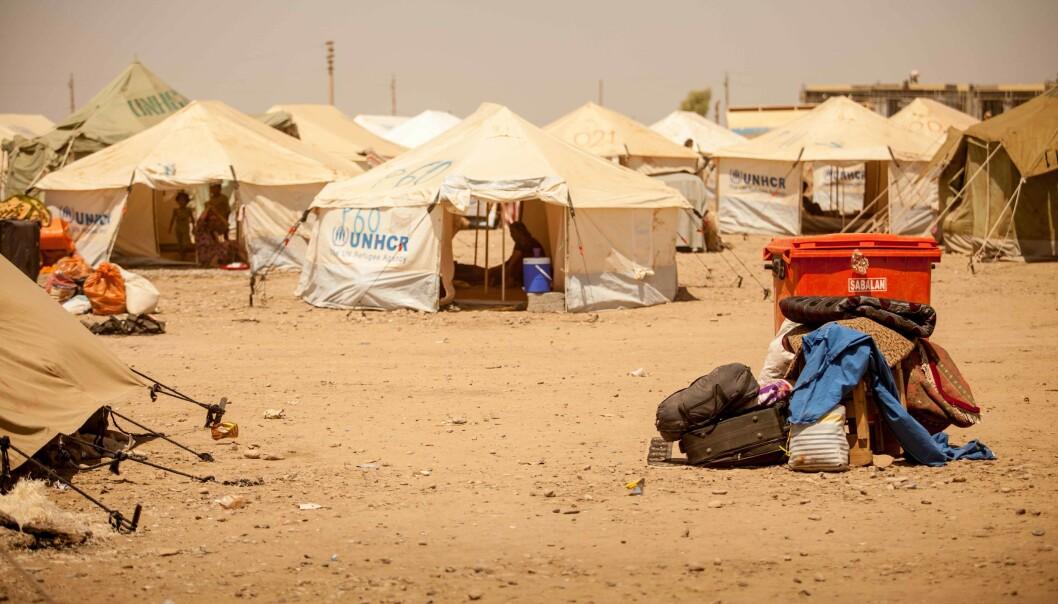 Opptil fire svenske barn kan allerede ha dødd på vei til eller mens de har oppholdt seg i leirer nordøst i Syria. Foto: Flo Smith/Nurphoto/REX