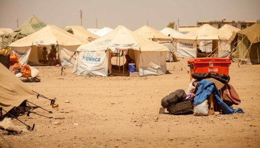 Fire svenske barn kan ha dødd i Syria-leirer
