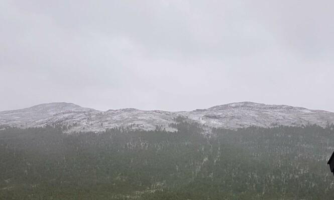 <strong>NORSK SOMMER:</strong> På 1100-1200 meters høyde ble snøen liggende. Foto: Hilde Hatlo