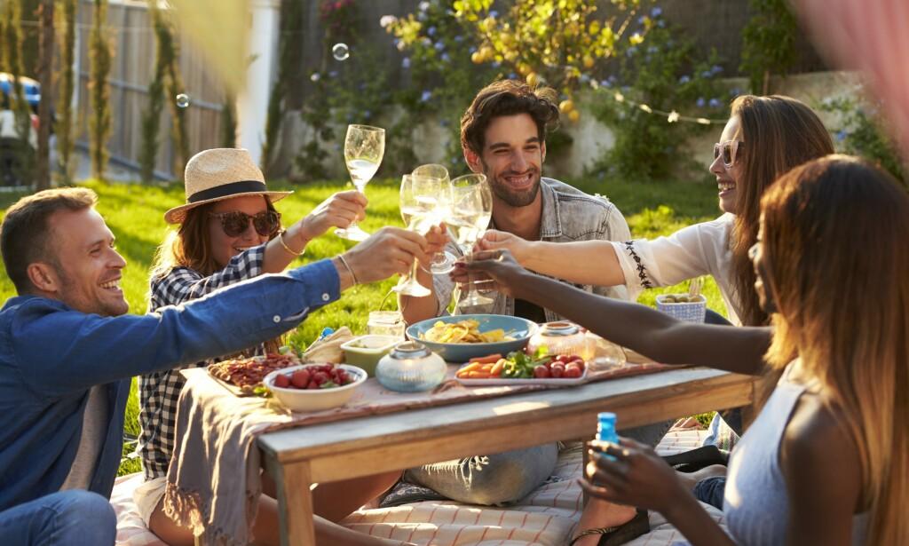 NYHETER FRA POLET: Sol og sommer og gode venner. Vinmonopolet har sluppet mange gode viner. Tre får terningkast seks. Den fjerde sekseren går til en flaske øl. Foto: Shutterstock / NTB Scanpix