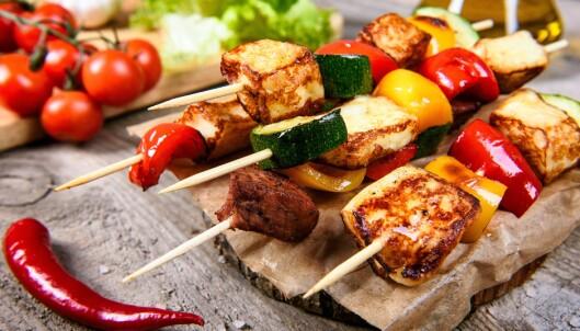 Advarer mot mat fra Europas verstingland: - Resistente bakterier