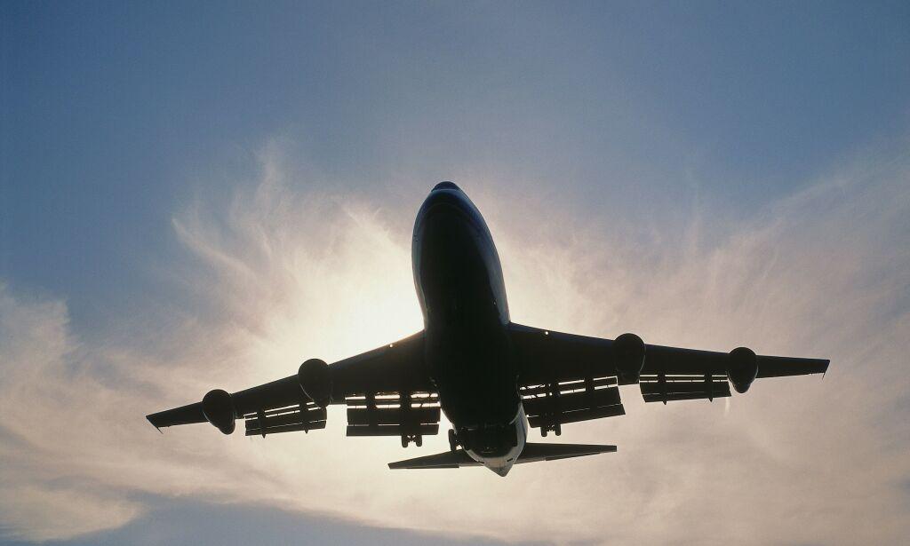 image: Forsker: - Du kan bare fly annethvert år