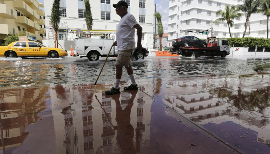 <strong>VÅTT:</strong> Louis Fernandez spaserer på en oversvømt gate i Miami Beach. Slike oversvømmelser vil bli stadig vanligere med stigende havnivå. Foto: Lynne Sladky / AP / NTB Scanpix