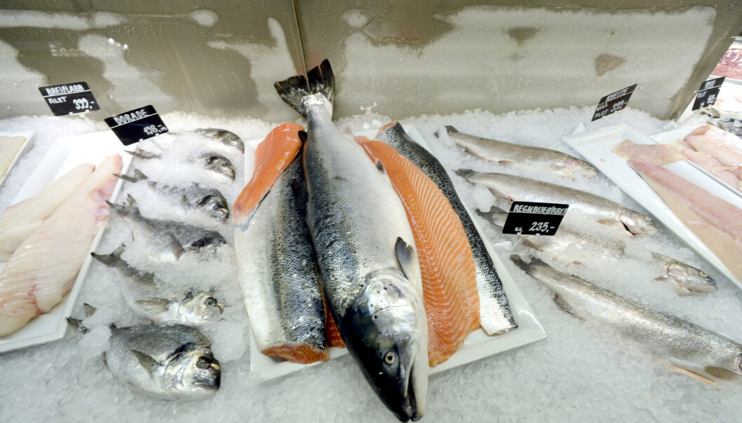 Studie: Å spise fisk gir bedre sædkvalitet
