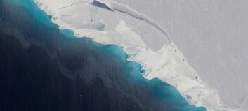 Smeltende isbre kan gi halv meter havstigning alene