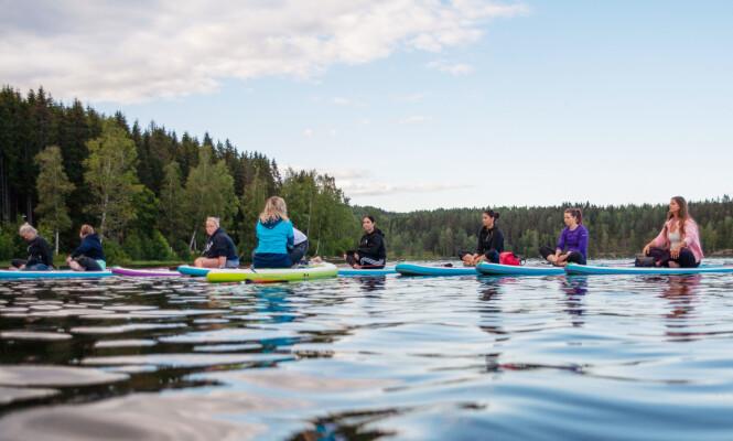 NATURENS RO: Det er noe helt eget ved det å gjøre yoga i naturens omgivelser - og da spesielt på et SUP-brett midt på vannet! FOTO: Hallgeir Thorbjørnsen
