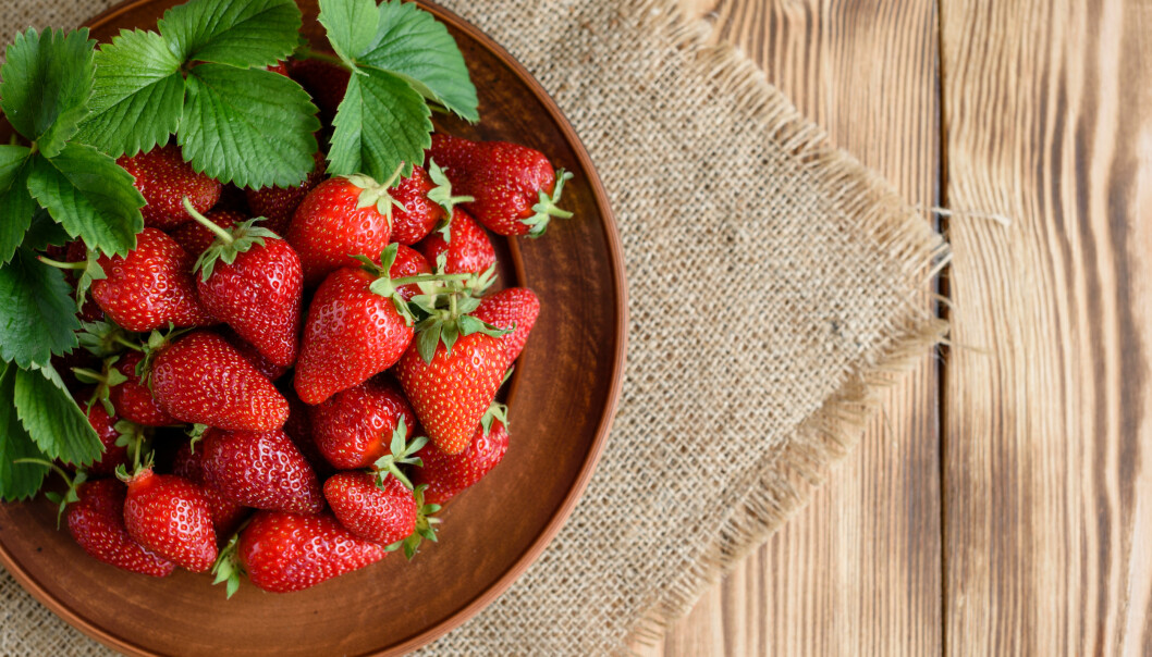 SUPERSUNT: Det er ingenting som gleder oss mer enn å høre at jordbær er supersunt å spise - spesielt før trening. FOTO: NTB Scanpix