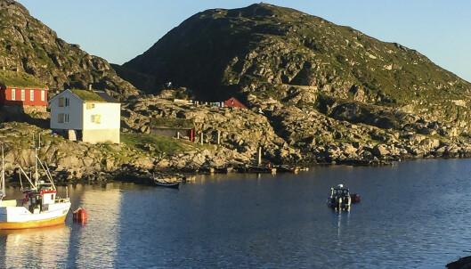 Nå kommer sommeren til Nord-Norge
