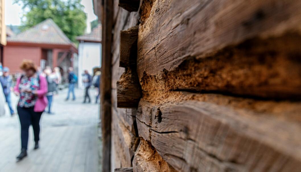 <strong>SUVENIR:</strong> Her kan man se at flere turister har gravd i treverket og fjernet biter - som en slags suvenir. Foto: Eivind Senneset / Dagbladet