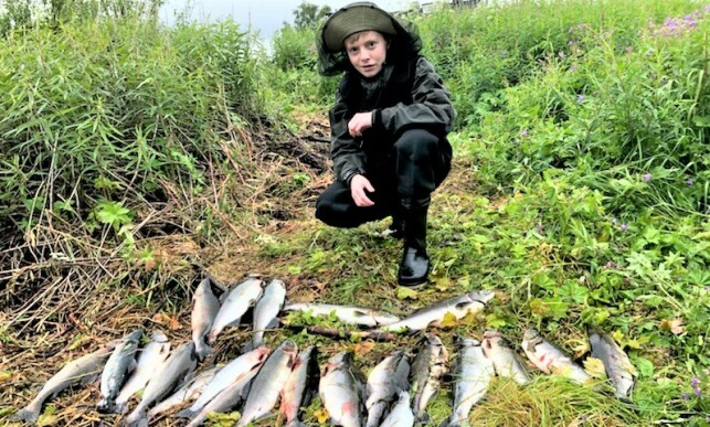 LARGE COLLECTION: When Øystein Hansen and his grandson August Sørensen (15) checked the fish trap in Karpelva before the weekend, there were over 20