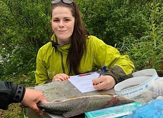 ANIMAL WORK: Maja Kruuse examined the humpback text taken in Karpelva before the weekend. Photo: Øystein Hansen