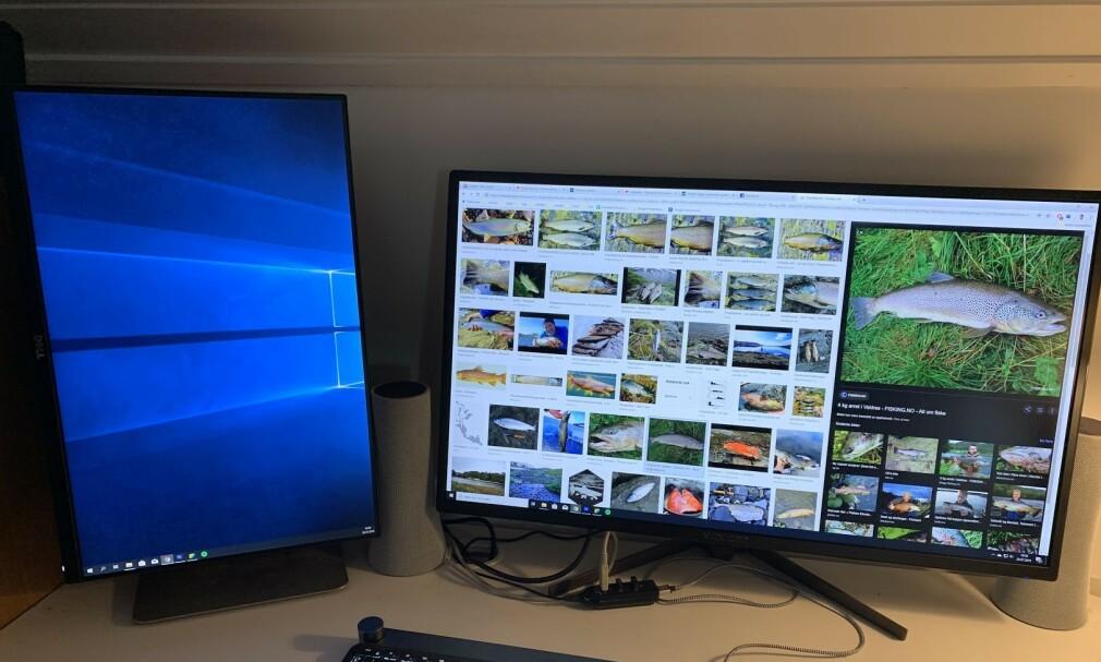 PÅ HØYKANT: Det er ingen grunn til å kvitte seg med din gamle hovedskjerm, hvis du oppgraderer til en større og bedre. Her har vi satt den gamle på høykant, og bruker den som avlastingsskjerm. Foto: BJørn Eirik Loftås