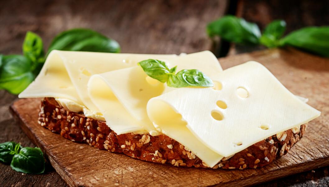 MEIERIPRODUKTER: Om du bør velge fete eller lette meieriprodukter avhenger av flere ting. FOTO: NTB Scanpix